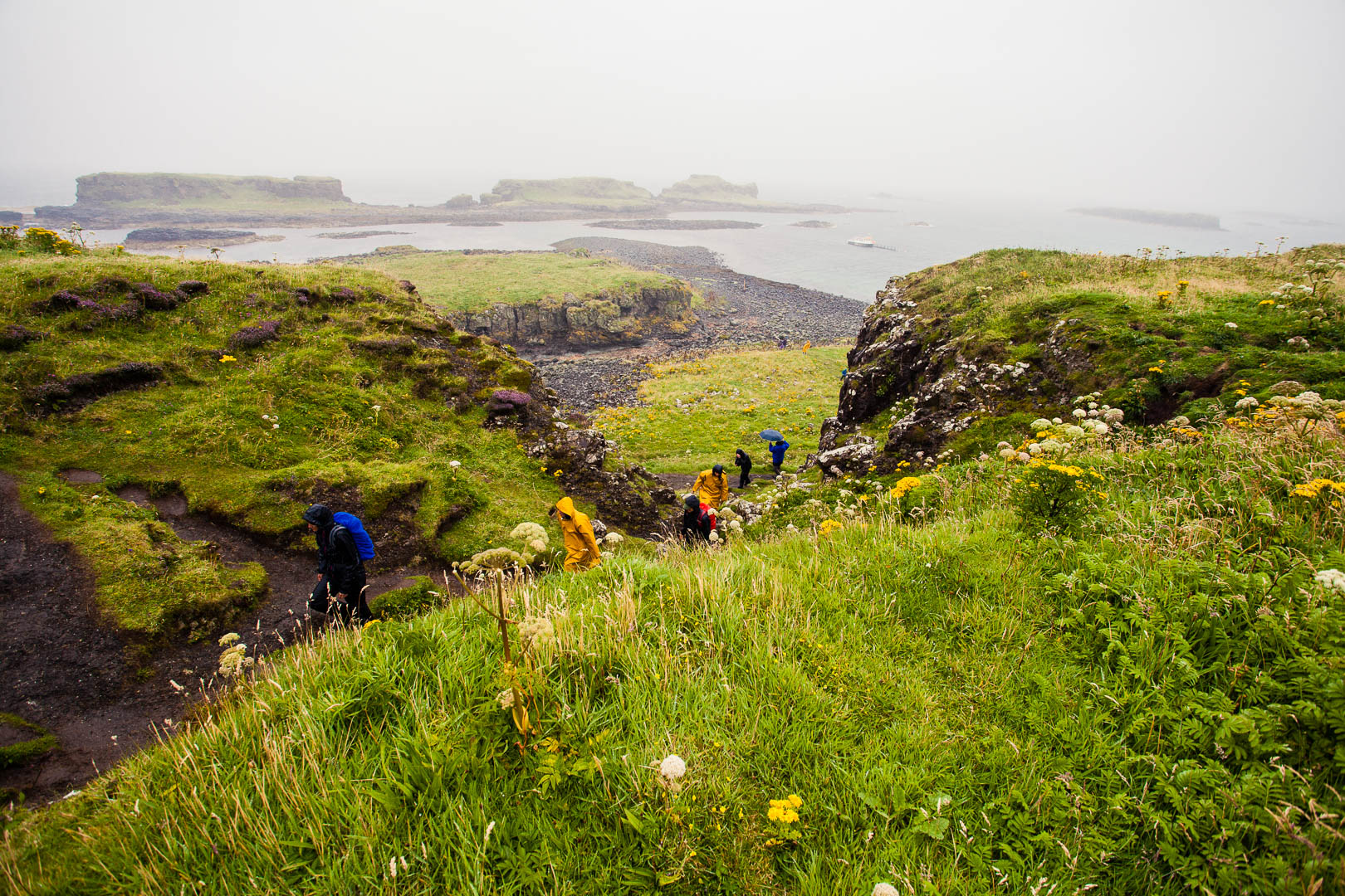 A group of people in yellow and dark rain jackets are walking on a trail on a green island in the rain.