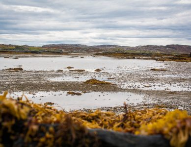 'Between the Tides' – Oransay (Isle of Colonsay)